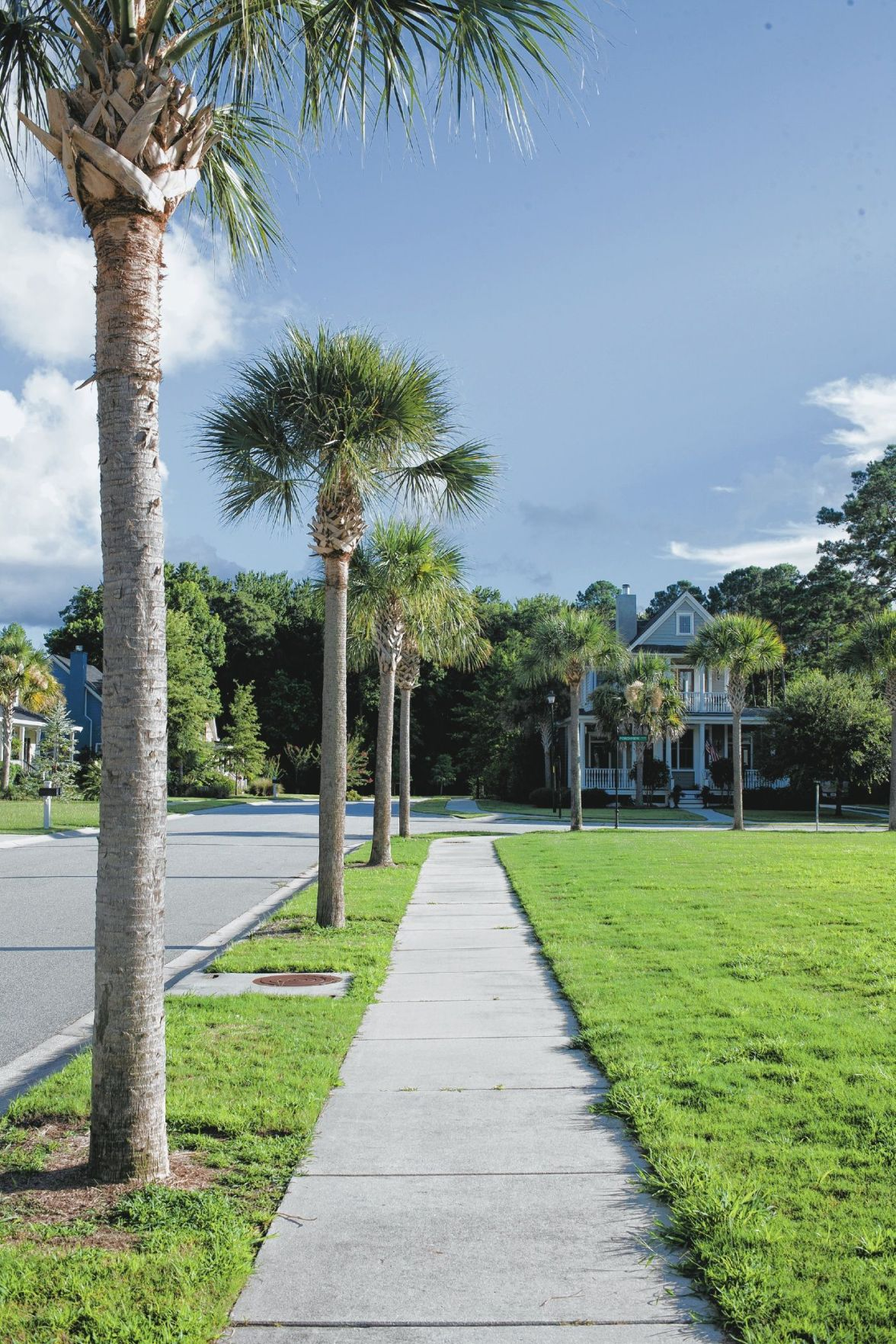 Eco-Friendly: Neighborly Johns Island community gearing up for new phase of energy-saving homes