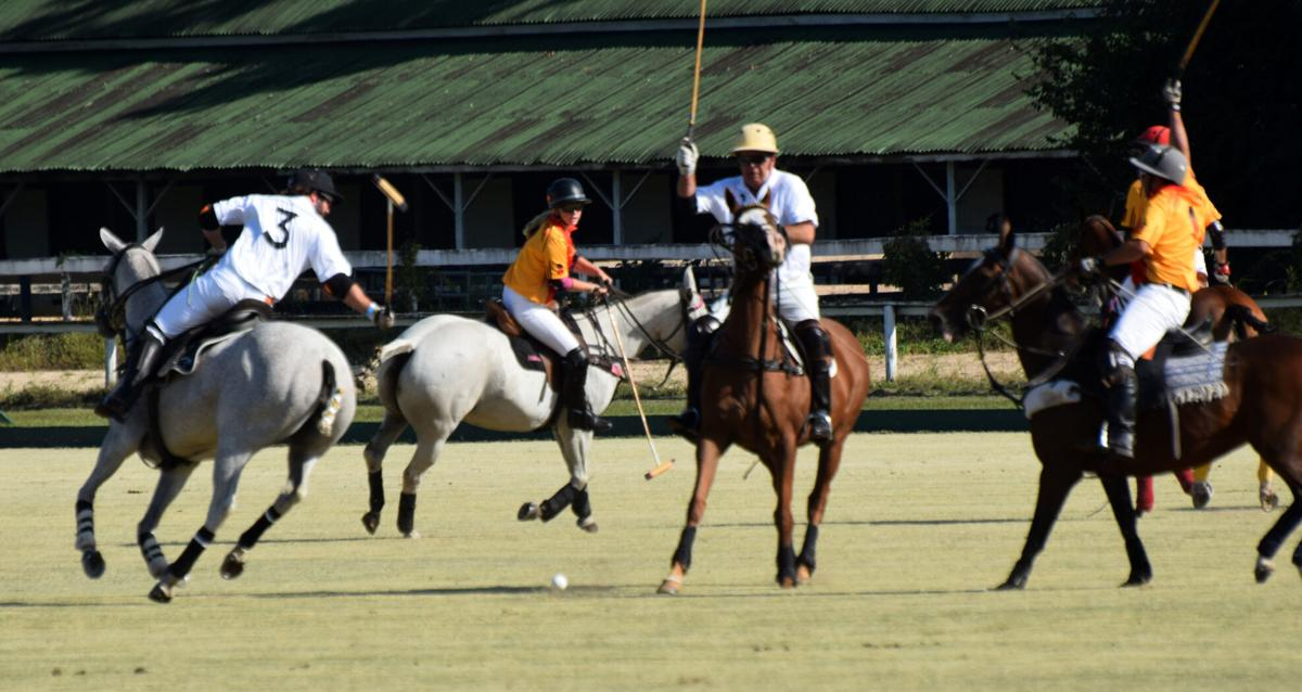 No Sunday games will be held at Whitney Field during Aiken Polo Club's fall season 4