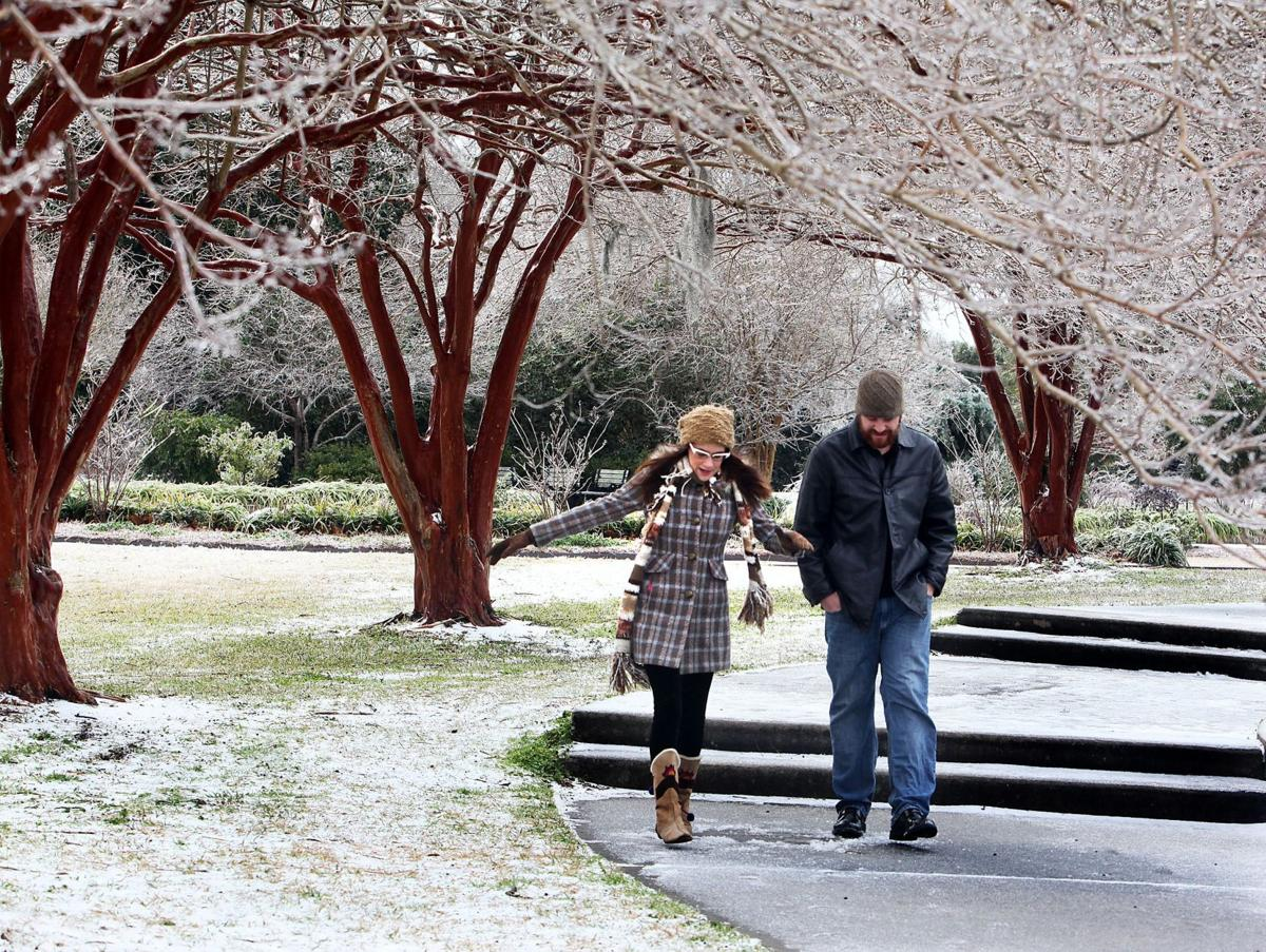 Lowcountry Ice and Snow