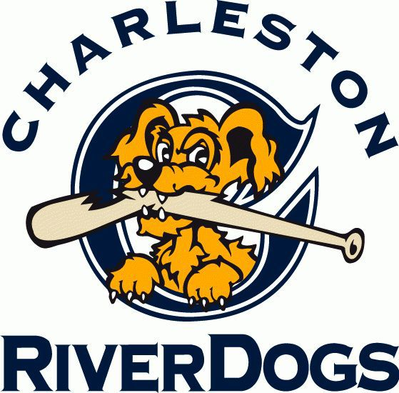 Drive roll past RiverDogs