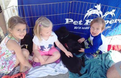 Pet Helpers selected for ASPCA $100K Challenge