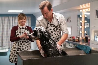 FILM-DOGS-REVIEW-ADV18