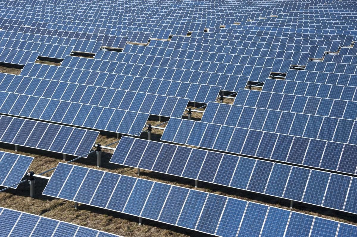 Massive solar farm project could be on its way to Georgetown timber site