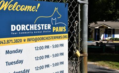 Plans for new Dorchester Paws shelter slowed by land issues