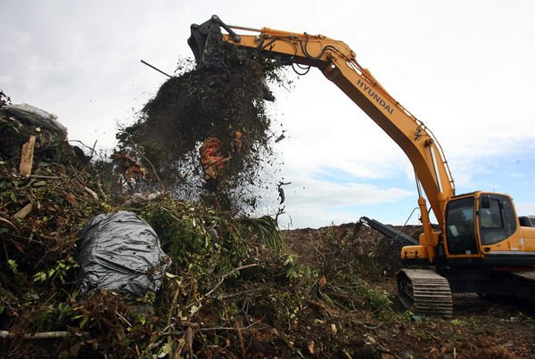 Rethinking plastic: Charleston County expected to decide on yard waste bags
