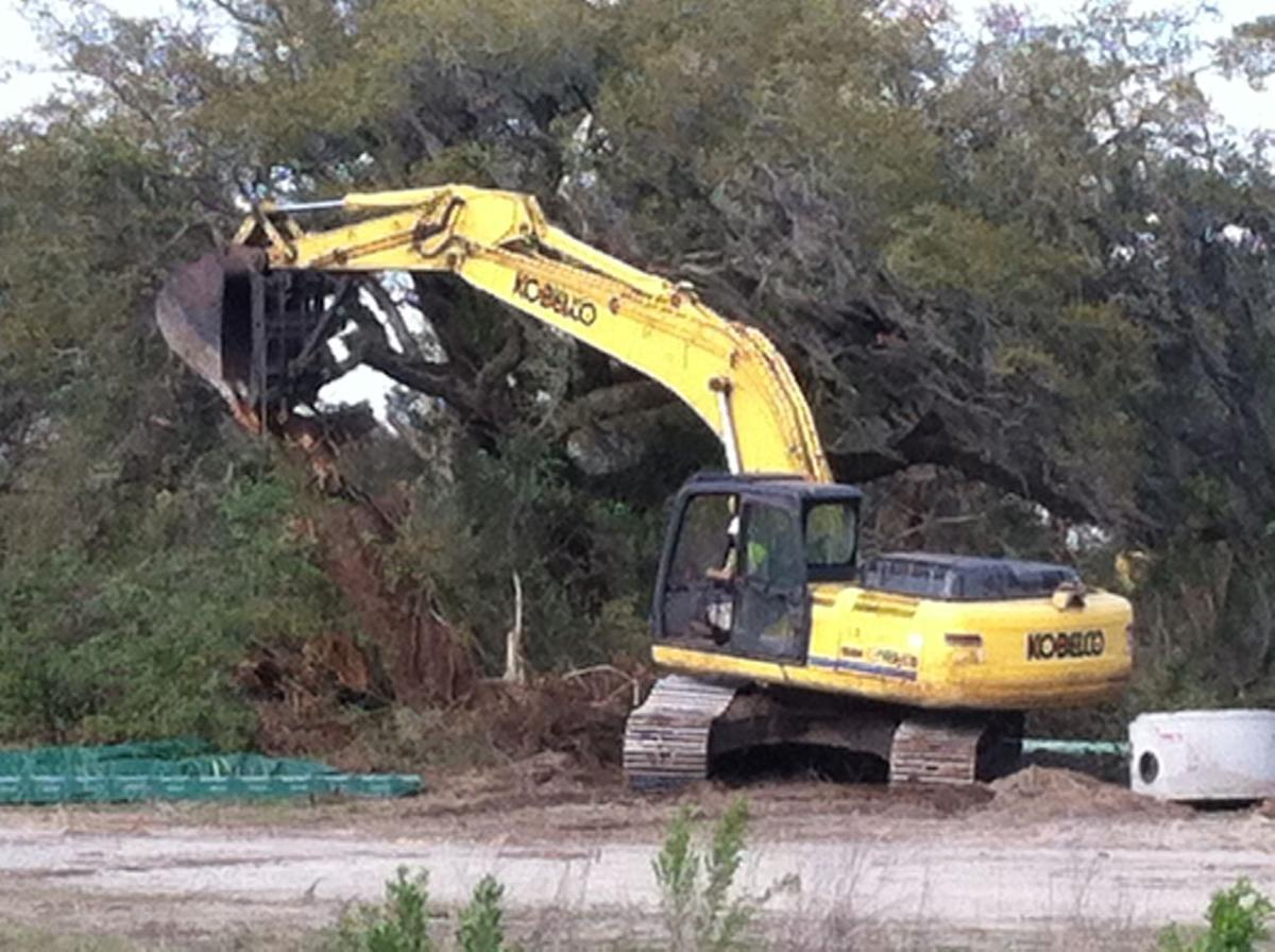 Trees cut to make way for North Charleston apartments