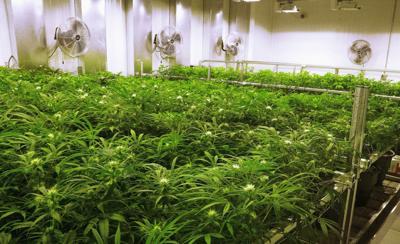 2018 medical marijuana proposal (copy)