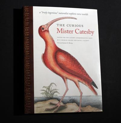 'The Curious Mr. Catesby'