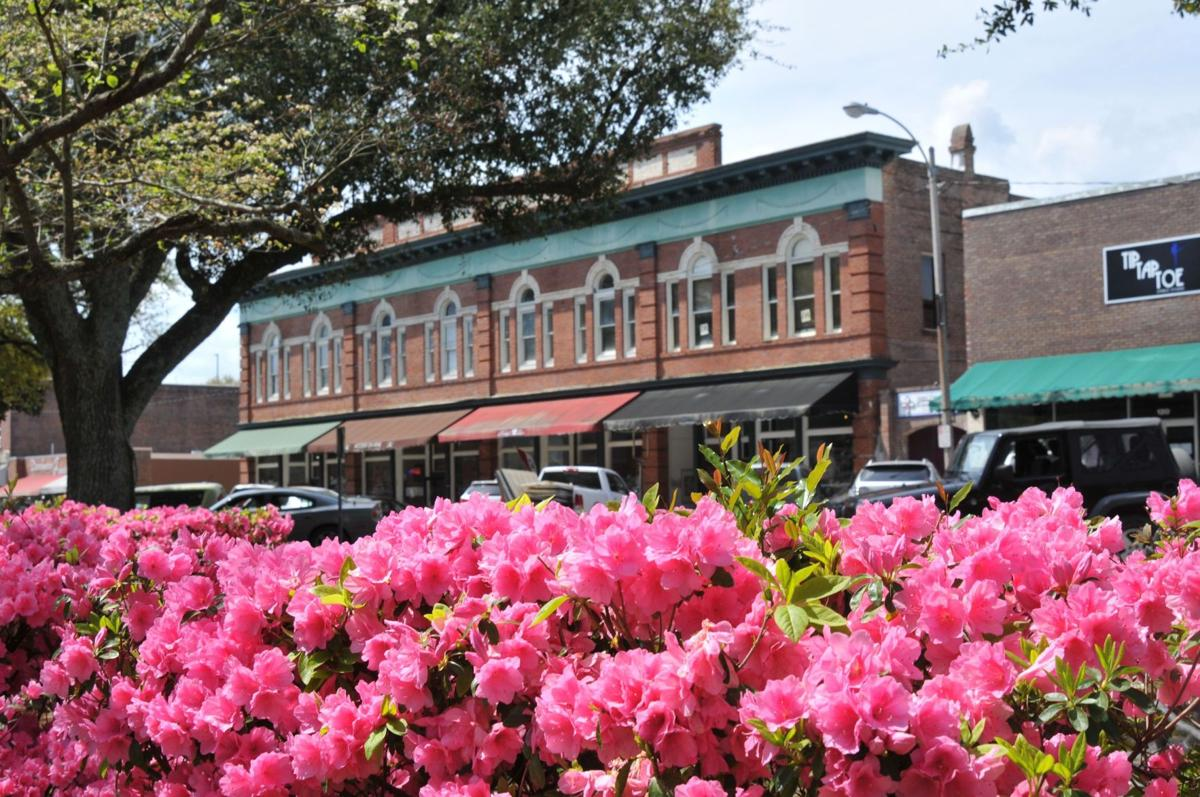 Summerville gathering places stretch from downtown to surburbia (copy)