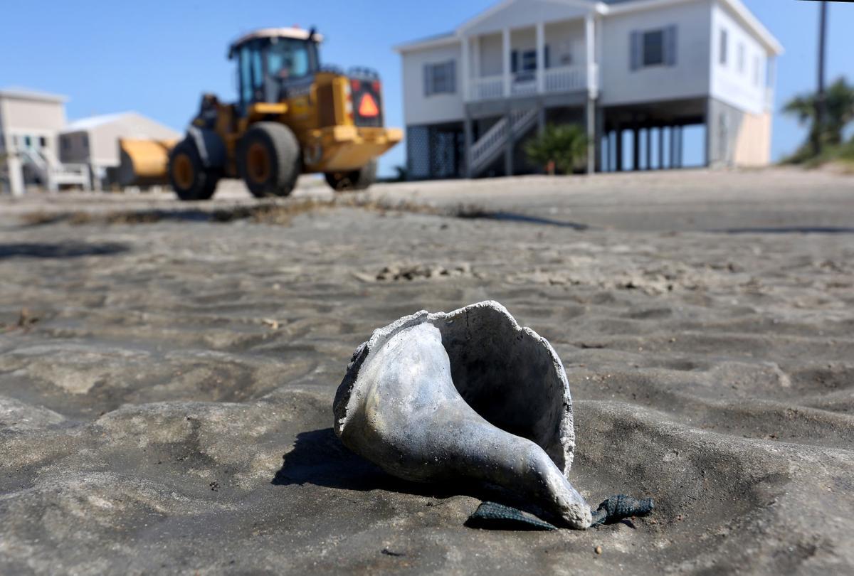 shells left behind.jpg