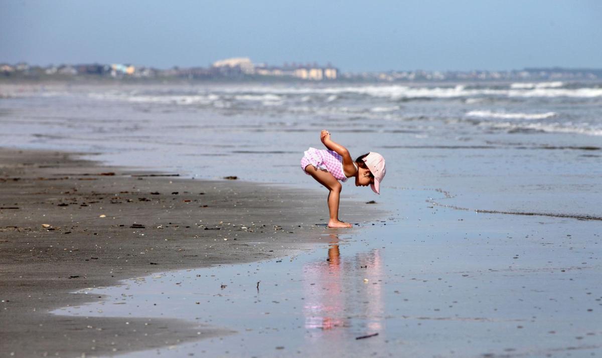 Beachwalker Park named a top beach in country