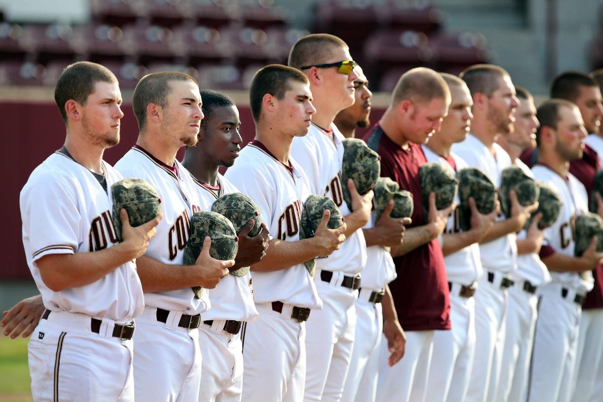 Baseball's pitch lost on blacks Statewide, nationally, participation is down