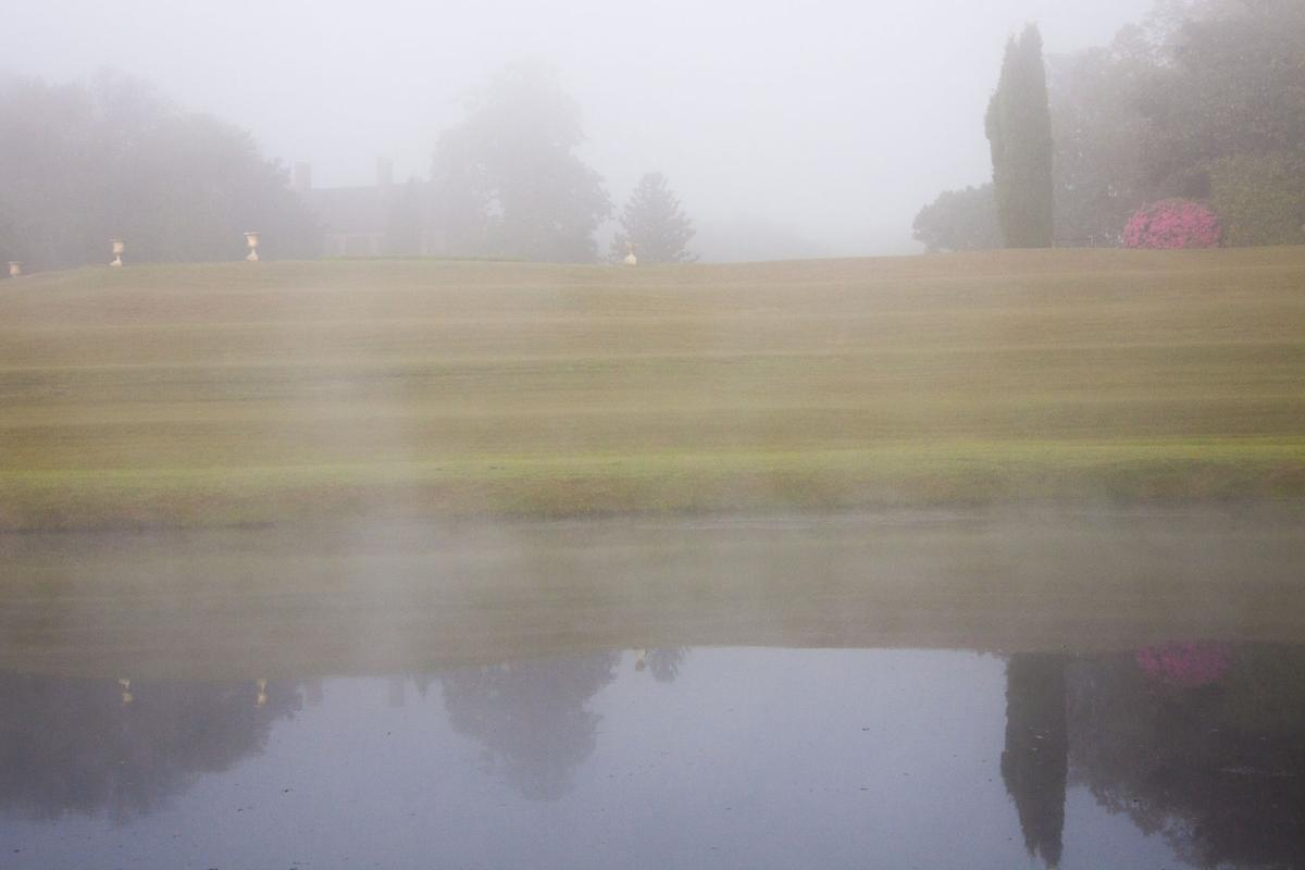 Merv-Gibson foggy morning.jpg