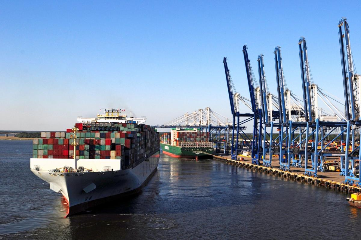Container ships at Wando Welch Terminal (copy)