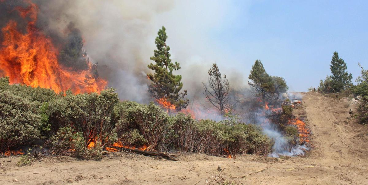 Cause of Rim Fire in California could take months to determine
