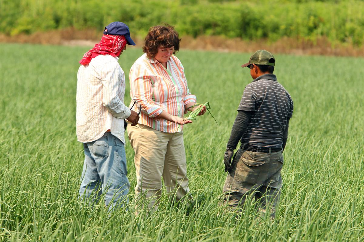 Fewer workers cross border, creating US farm labor shortage