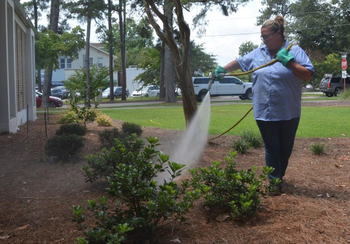 Woman watering plants in heat