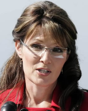Palin's strategy puzzling