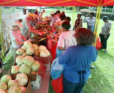 LEDE PHOTO Lowcountry Food Bank Lede (copy)