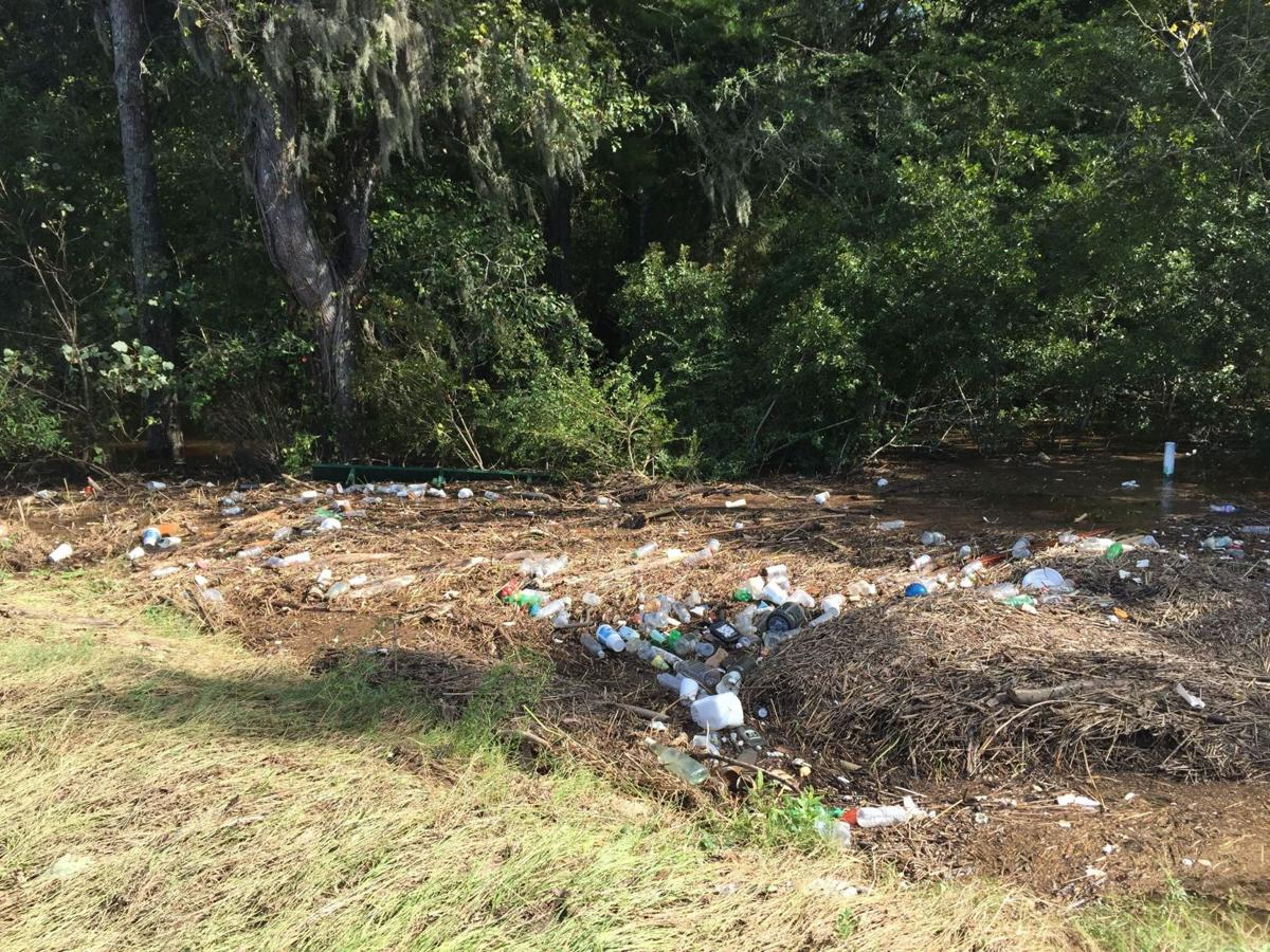 Fall flood will mean more trash for Ashley River cleanup volunteers