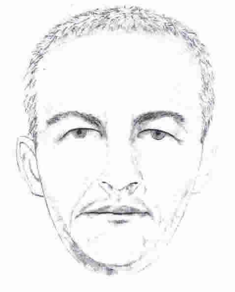 Charleston police seeking man who carjacked woman