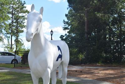 USC Aiken horse (copy)
