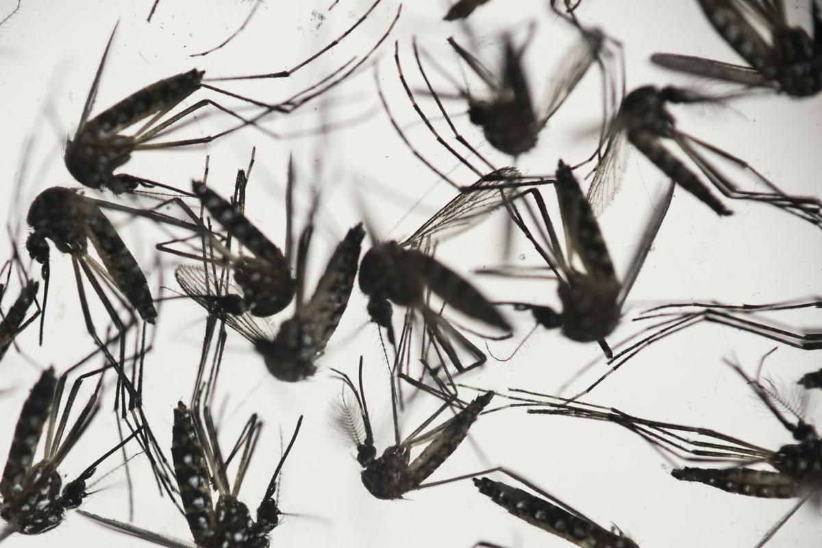 Sanford calls Zika 'burgeoning health crisis'