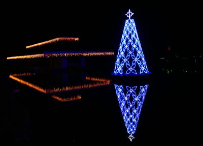 Holiday Festival of Lights (copy)