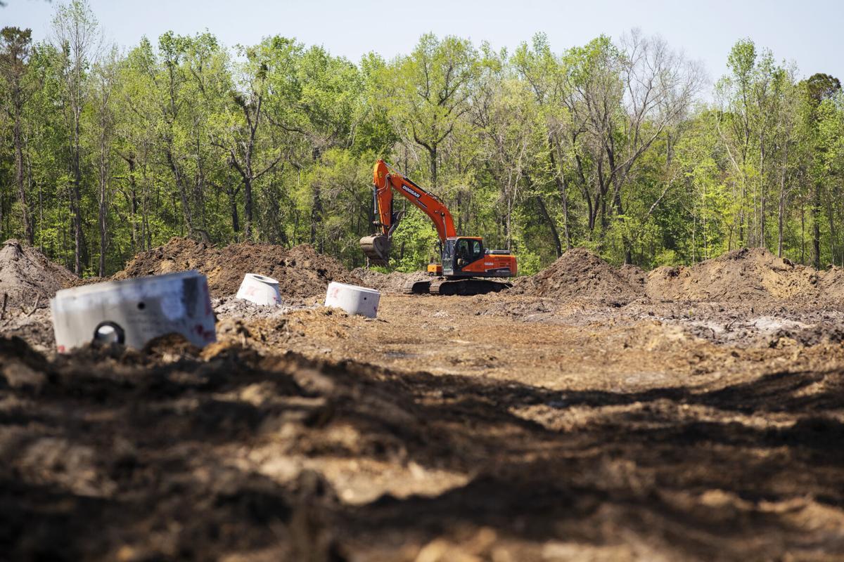 cleared land.jpg