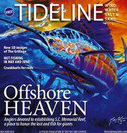 Offshore Heaven