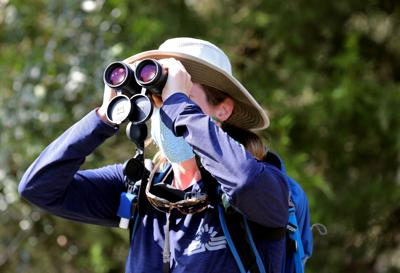 Searching for birds at Caw Caw Interpretive Center