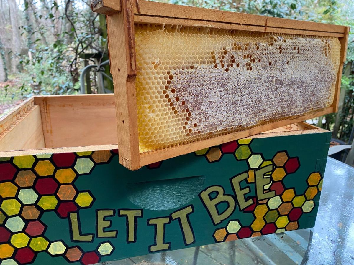 Honey bee frame on top of box