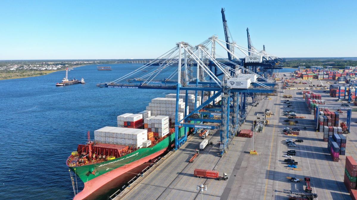 Ships at Wando Welch Terminal