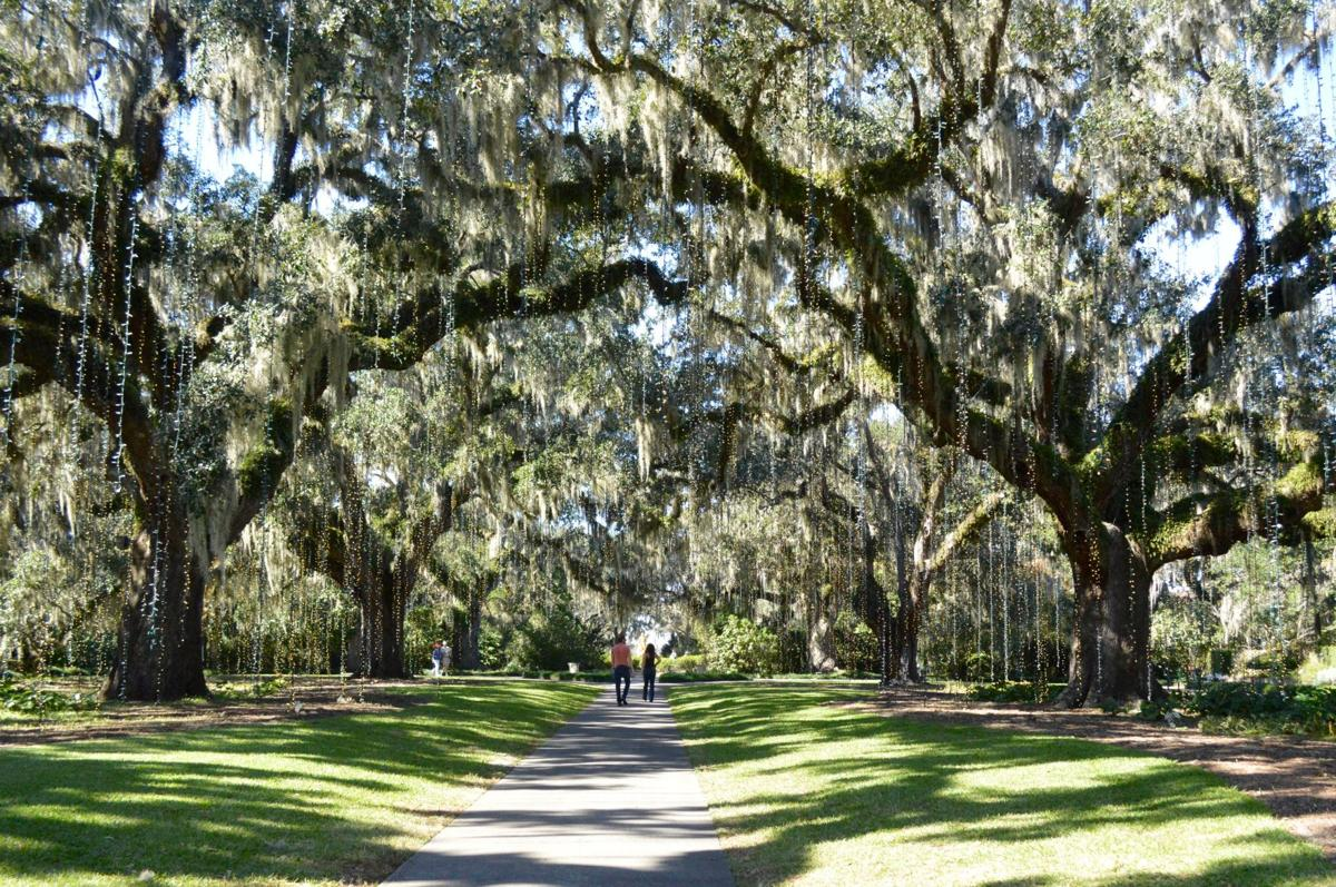 Brookgreen Gardens offers historic landmark and sculpture mecca on ...