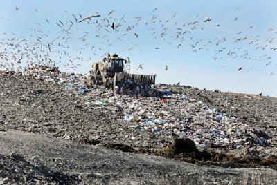 Berkeley County landfill (copy)