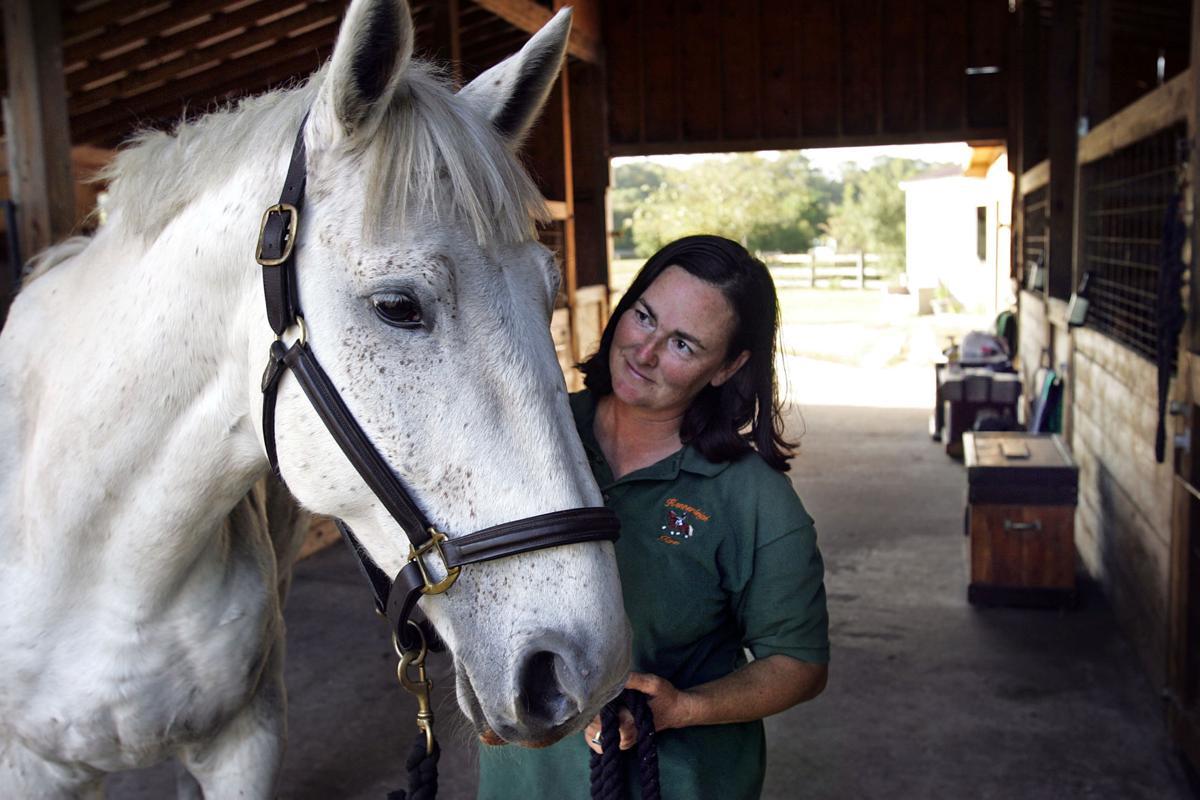 Three horses seized on Johns Island