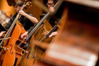 Spoleto Festival USA Orchestra (copy)
