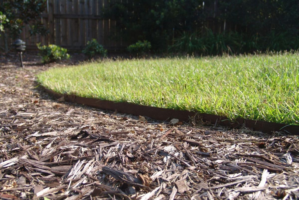 Tips for mulching landscape
