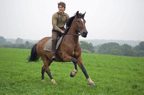 'War Horse' needs reining in just a little