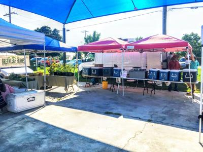 Owens Field Market