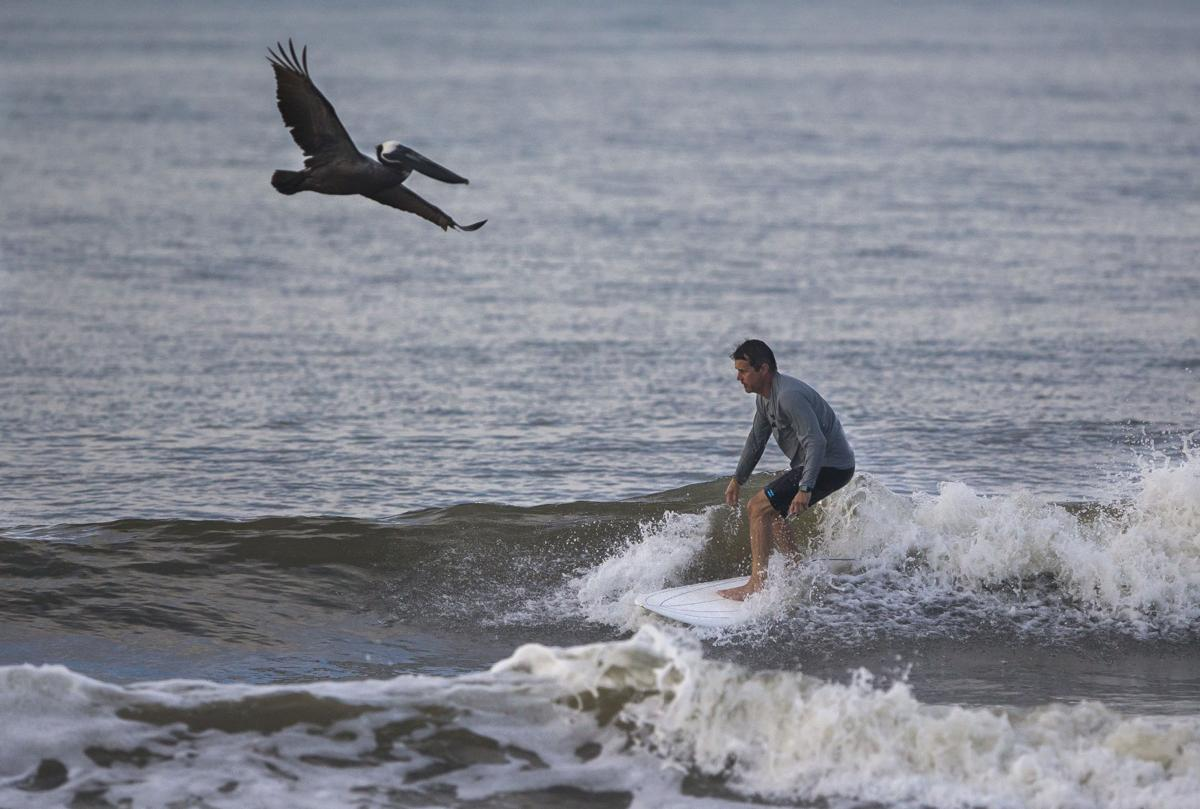 To Charleston's surfers, area's explosive growth evident in