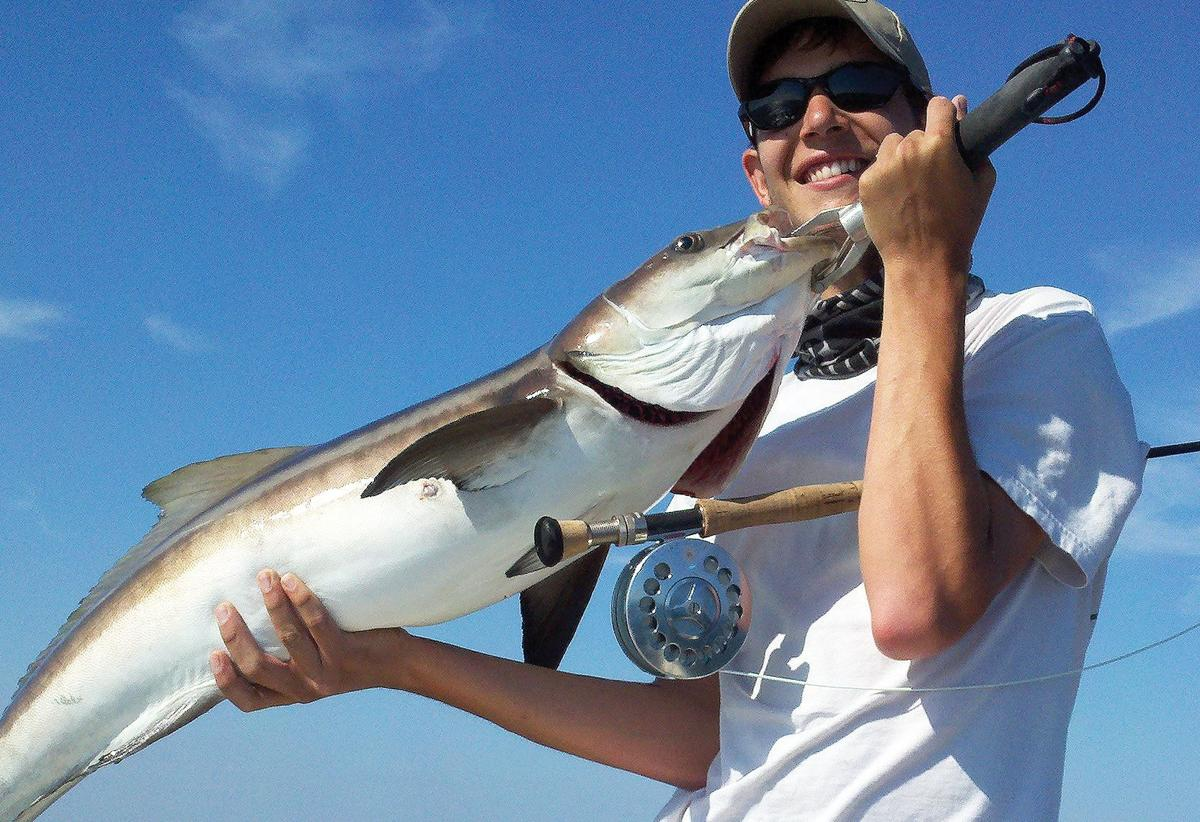 Cobia, the cool way