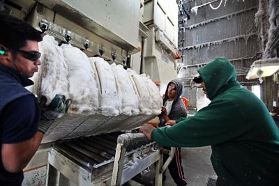 A day in the life: From king cotton to odd jobs, those in forgotten South Carolina do what they must to make a buck