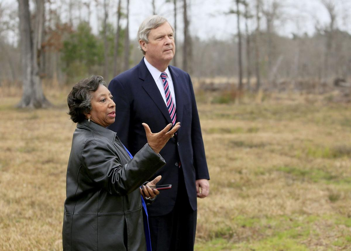 Wary black forestland owners offered help