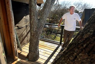 Town vs. treehouse