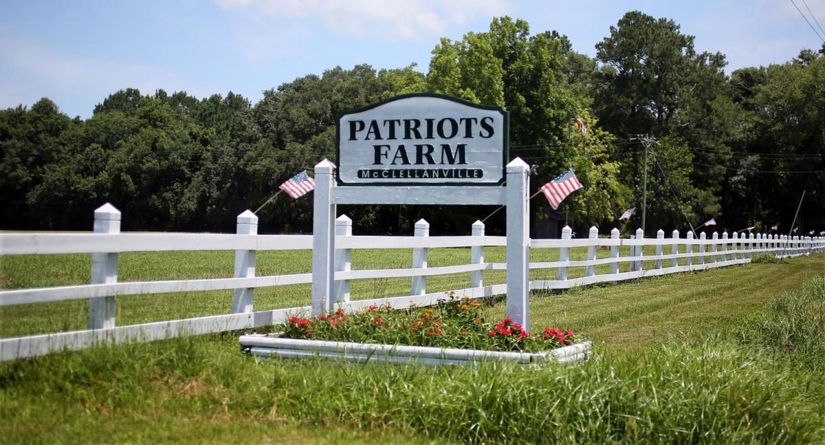 Patriots Farm Plantation American flags mark McClellanville spread of houses, barn, former berry fields