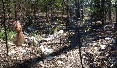 The state wants to ban local governments from banning plastic bags? (copy)