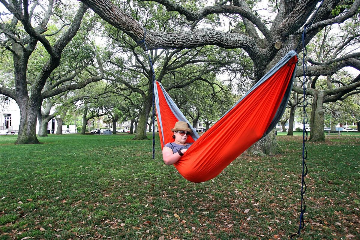 Rest easy (for now): Hammock ban put off by Charleston City Council