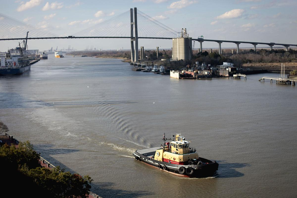 Savannah targets cruises but withholds study