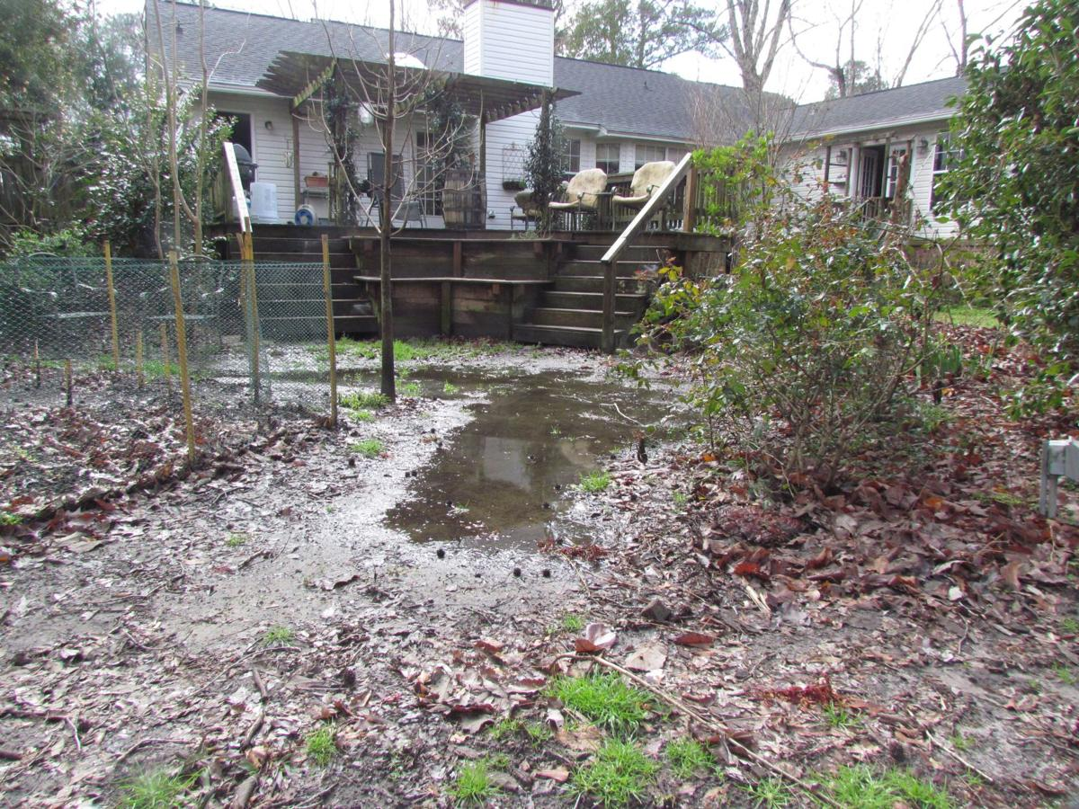 Drainage helps water-logged yards